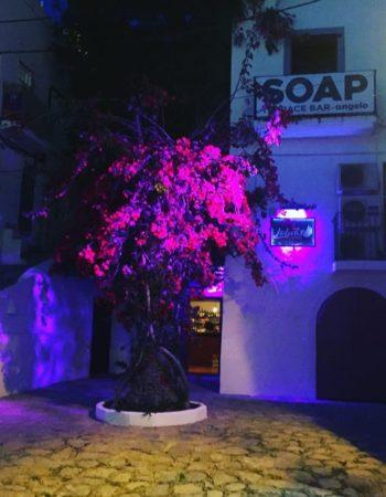 Lolas Club Ibiza